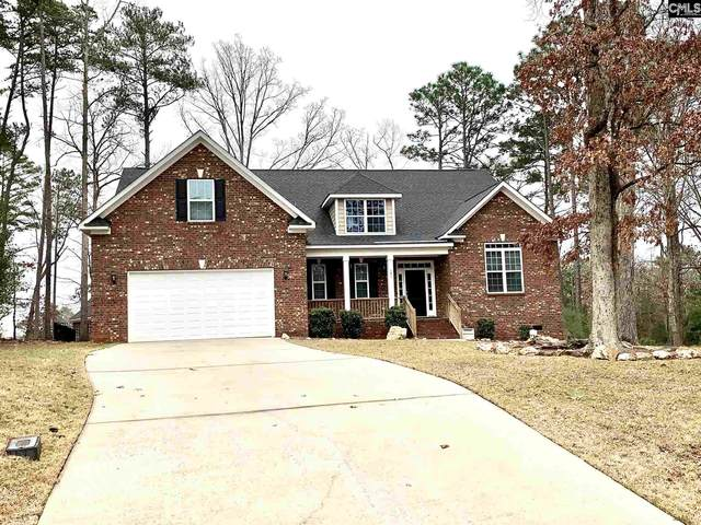 209 Quiet Cove Court, Chapin, SC 29036 (MLS #488822) :: The Olivia Cooley Group at Keller Williams Realty