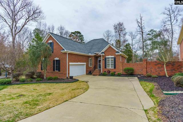 112 Summer Branch Lane, Irmo, SC 29063 (MLS #488833) :: Resource Realty Group