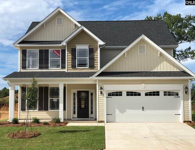 244 Wessinger Farms Road, Chapin, SC 29036 (MLS #488844) :: EXIT Real Estate Consultants