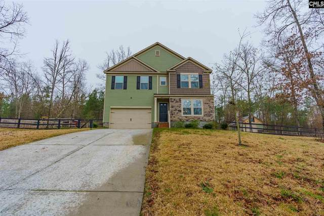 63 Carina Lane, Lugoff, SC 29078 (MLS #488876) :: EXIT Real Estate Consultants