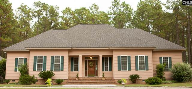 587 Aiken Road, Ridge Spring, SC 29129 (MLS #488905) :: EXIT Real Estate Consultants