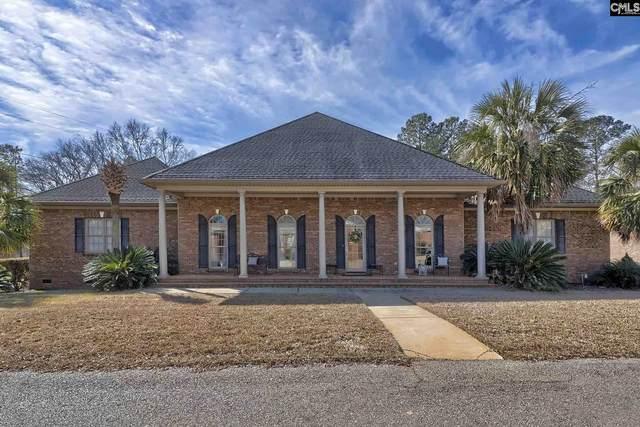 203 Hogan Way, Lexington, SC 29072 (MLS #488968) :: EXIT Real Estate Consultants