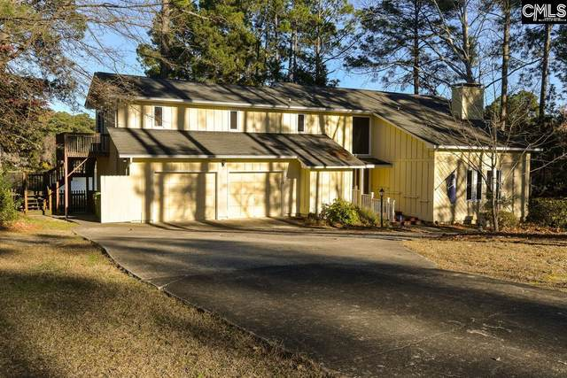 236 W Springs Road, Columbia, SC 29223 (MLS #489004) :: Home Advantage Realty, LLC