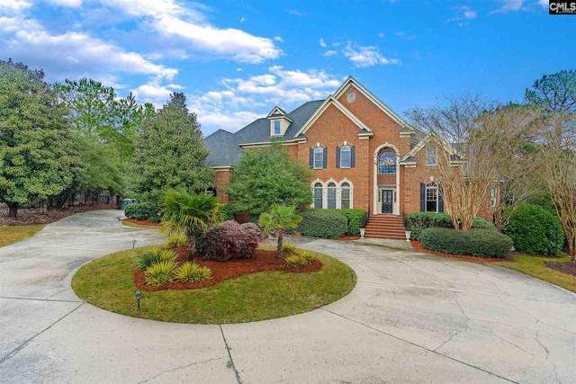10 Enclave Court, Columbia, SC 29223 (MLS #489036) :: The Latimore Group