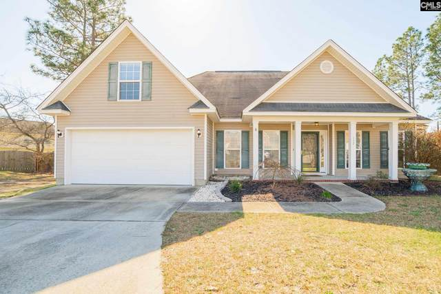 117 White Birch Court, Lexington, SC 29073 (MLS #489048) :: EXIT Real Estate Consultants