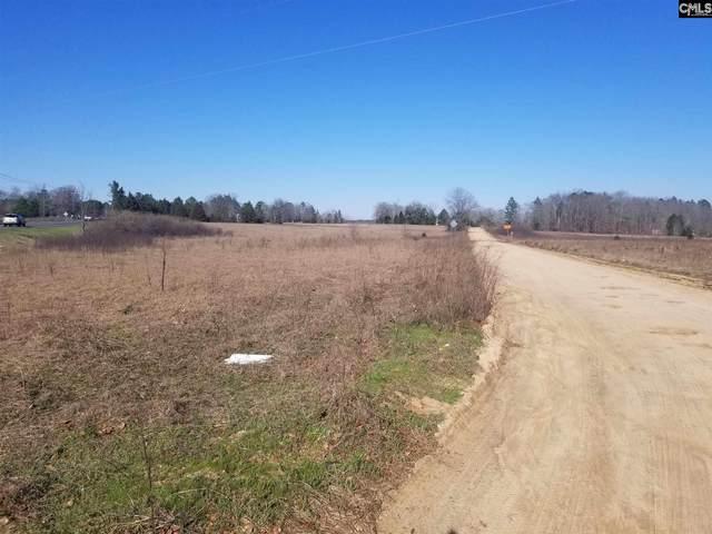 0 Edmund Highway, Pelion, SC 29123 (MLS #489161) :: Resource Realty Group
