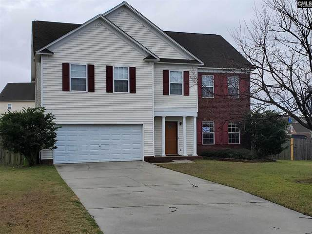 216 Baccharis Drive, Columbia, SC 29229 (MLS #489186) :: Resource Realty Group