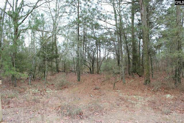 767 Whiskey Road Lot 3 & 4A, Leesville, SC 29070 (MLS #489408) :: EXIT Real Estate Consultants