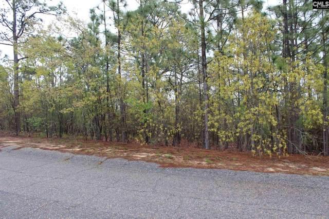 233 Straightaway Lane, Gaston, SC 29053 (MLS #489409) :: EXIT Real Estate Consultants