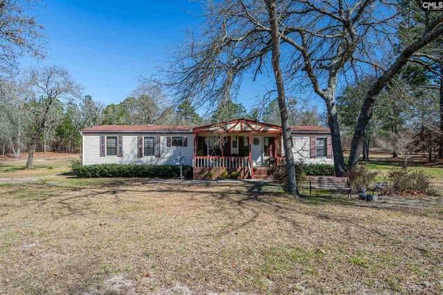 184 Testo Drive, Lexington, SC 29073 (MLS #489489) :: Home Advantage Realty, LLC