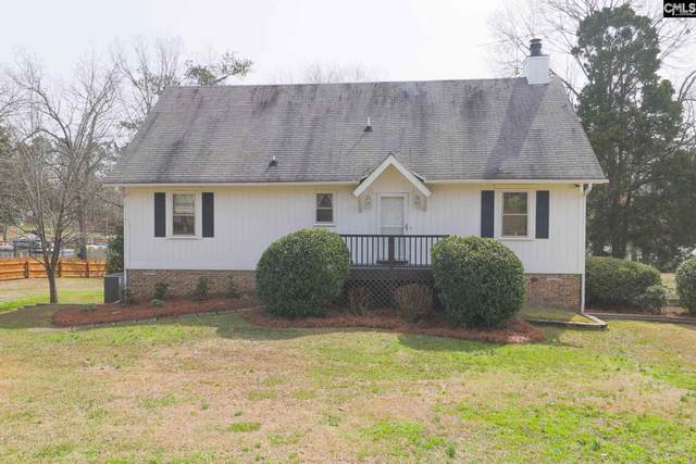 261 Mary Drive, Chapin, SC 29036 (MLS #489515) :: The Meade Team