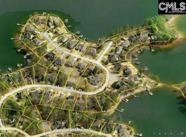 149 Lake Vista Drive, Chapin, SC 29036 (MLS #490181) :: EXIT Real Estate Consultants