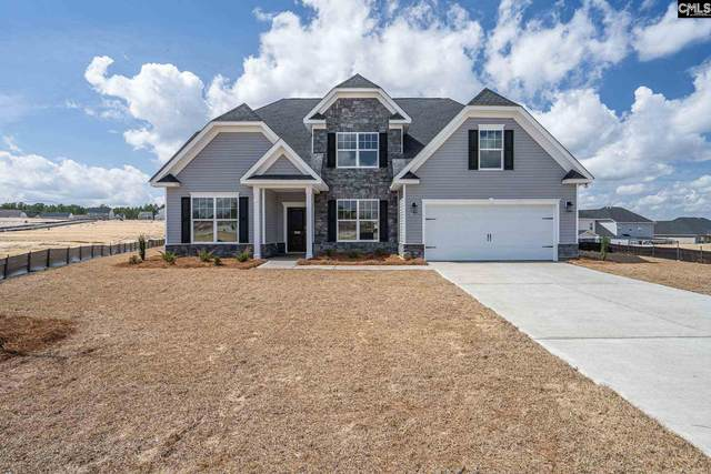 1030 Catskills Way 244, Lexington, SC 29073 (MLS #490804) :: Loveless & Yarborough Real Estate