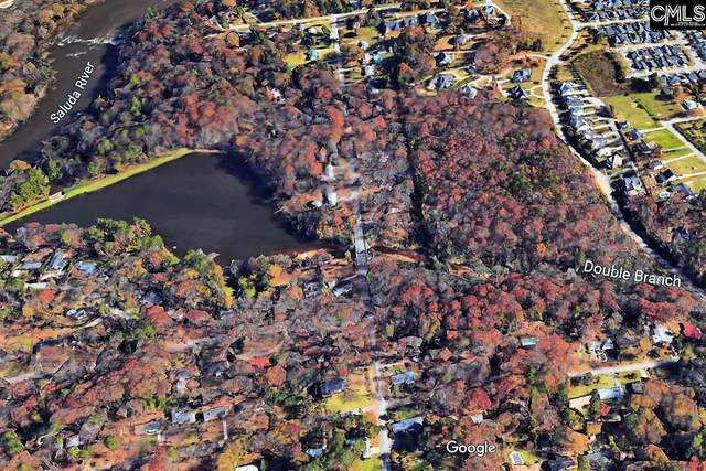Botanical Parkway, West Columbia, SC 29169 (MLS #490866) :: EXIT Real Estate Consultants
