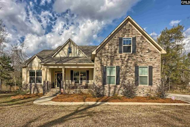 3012 Wessinger Road, Chapin, SC 29036 (MLS #490925) :: The Latimore Group