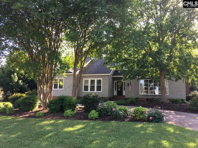 118 Lake Vista Drive, Chapin, SC 29036 (MLS #491069) :: EXIT Real Estate Consultants