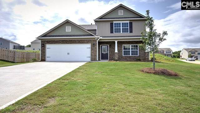 1114 Cherry Meadow Lane, Chapin, SC 29036 (MLS #491070) :: EXIT Real Estate Consultants