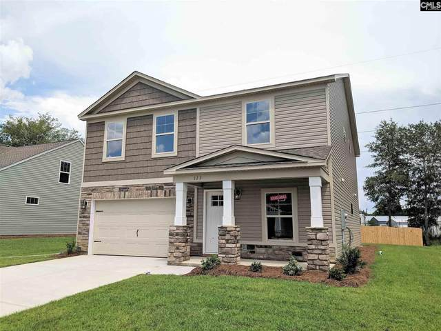 234 Elsoma Drive, Chapin, SC 29036 (MLS #491146) :: EXIT Real Estate Consultants