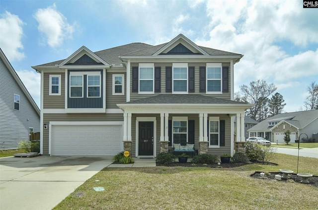 807 Kimsey Drive, Chapin, SC 29036 (MLS #491266) :: EXIT Real Estate Consultants