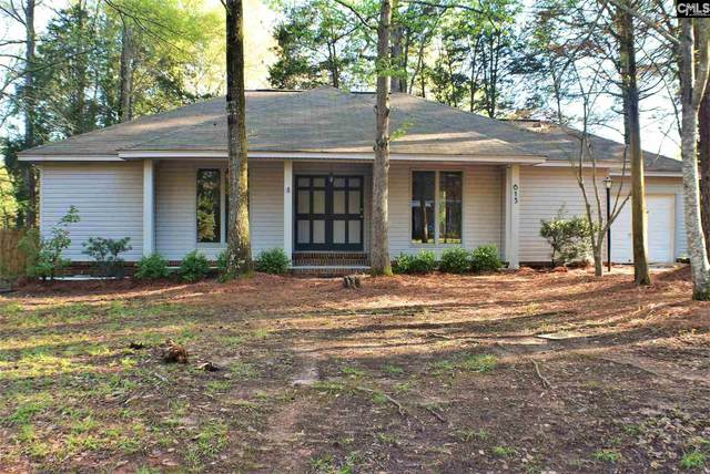 613 N Royal Tower Drive, Irmo, SC 29063 (MLS #491467) :: NextHome Specialists