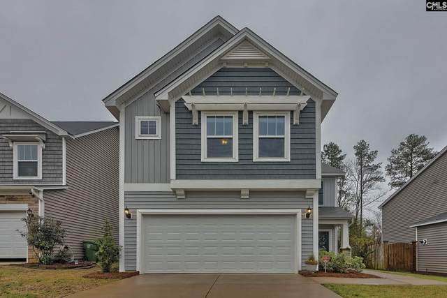 326 Lanyard Lane, Chapin, SC 29036 (MLS #491477) :: Home Advantage Realty, LLC