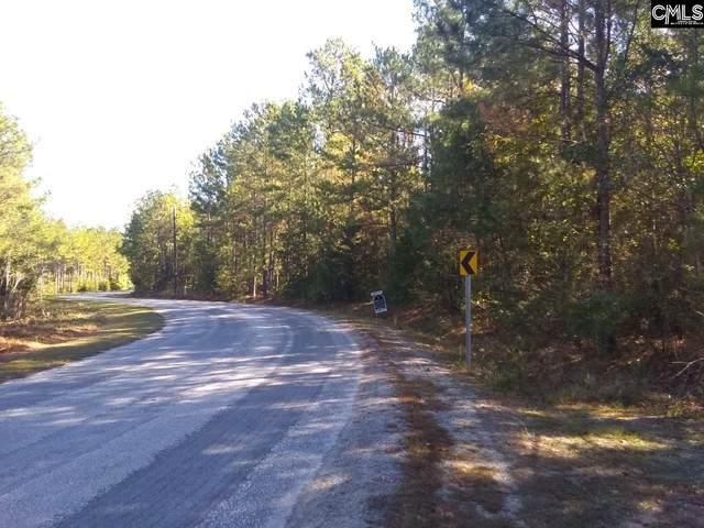 Dillinger Rd, Pomaria, SC 29126 (MLS #491502) :: EXIT Real Estate Consultants
