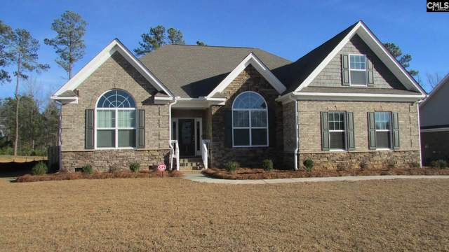 507 Radnor Hunt Court, Gilbert, SC 29054 (MLS #491574) :: EXIT Real Estate Consultants