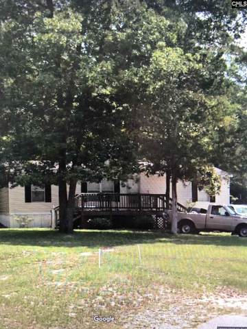 103 Smith Pond Road, Lexington, SC 29072 (MLS #491582) :: Disharoon Homes