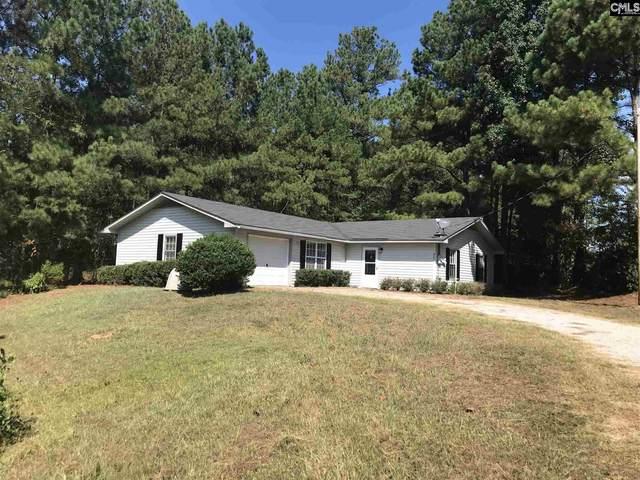 801 Columbia Avenue, Chapin, SC 29036 (MLS #492071) :: Fabulous Aiken Homes & Lake Murray Premier Properties