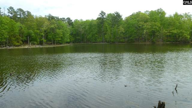 165 Summer Bay Drive, Chapin, SC 29036 (MLS #492189) :: The Latimore Group