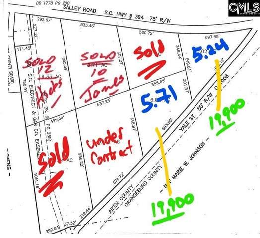 0 Salley Road, Salley, SC 29137 (MLS #493201) :: EXIT Real Estate Consultants