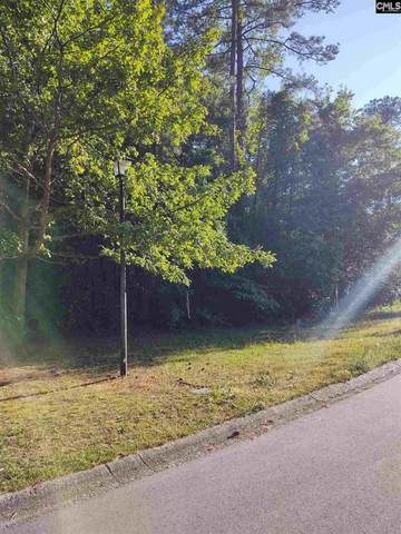 165 Charles Towne Court, Columbia, SC 29209 (MLS #493326) :: EXIT Real Estate Consultants