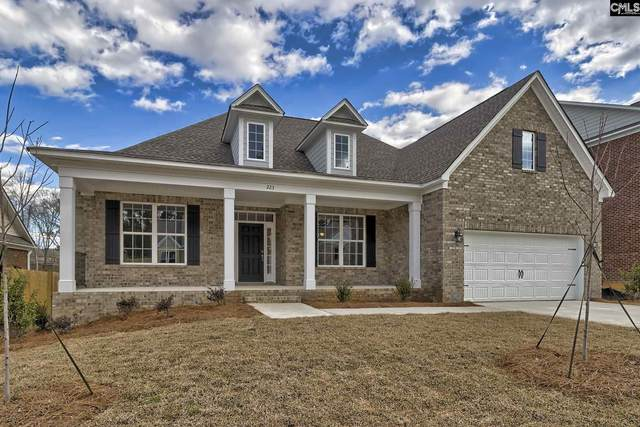 281 Cedar Hollow Lane 23, Irmo, SC 29063 (MLS #493418) :: Home Advantage Realty, LLC