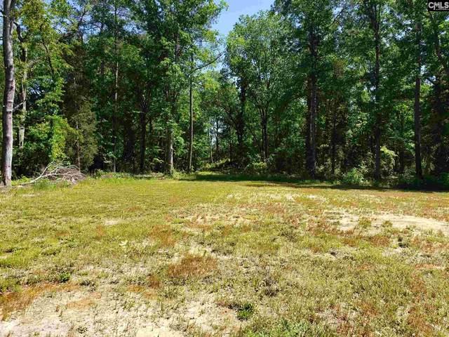 3150 Mineral Springs Road, Lexington, SC 29073 (MLS #493665) :: EXIT Real Estate Consultants
