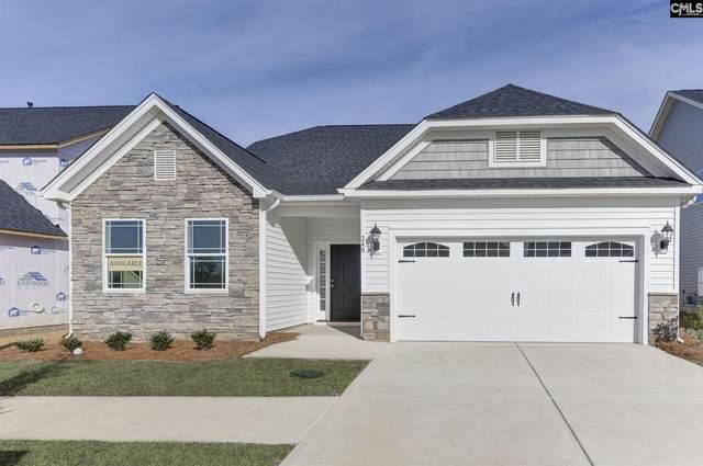 252 Wessinger Farms Rd, Chapin, SC 29036 (MLS #494168) :: Fabulous Aiken Homes