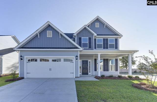 934 Taramore Lane, Lexington, SC 29072 (MLS #494264) :: EXIT Real Estate Consultants