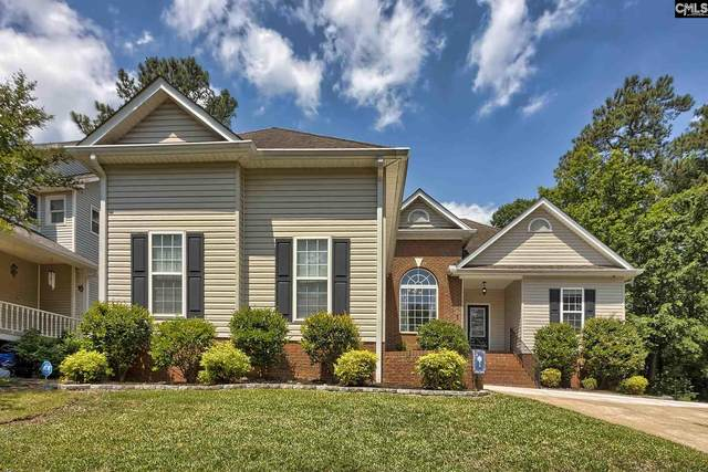 905 Willowood Parkway, Chapin, SC 29036 (MLS #494613) :: EXIT Real Estate Consultants