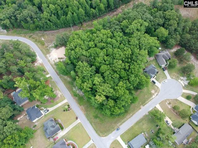 25 Bird Song Lane, Elgin, SC 29045 (MLS #494725) :: The Meade Team