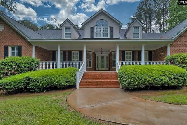 513 Corley Manor Court, Lexington, SC 29072 (MLS #494806) :: EXIT Real Estate Consultants