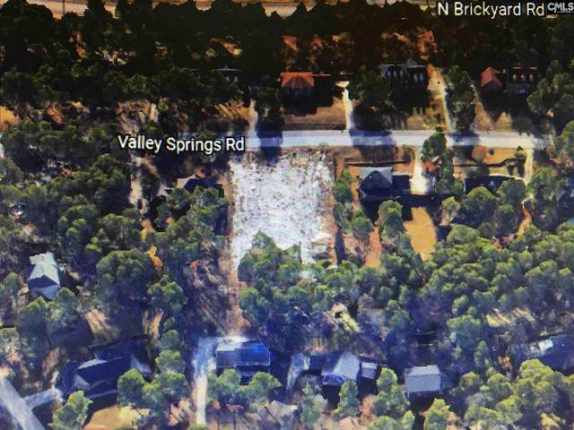 233 Valley Springs Road, Columbia, SC 29223 (MLS #494831) :: The Meade Team