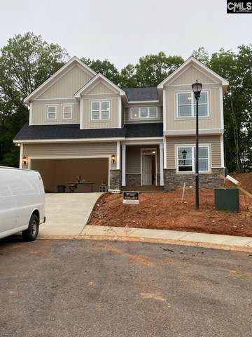 410 Woolbright Court, Chapin, SC 29036 (MLS #494859) :: EXIT Real Estate Consultants