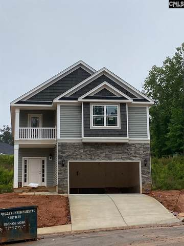 409 Woolbright Court, Chapin, SC 29036 (MLS #494860) :: EXIT Real Estate Consultants