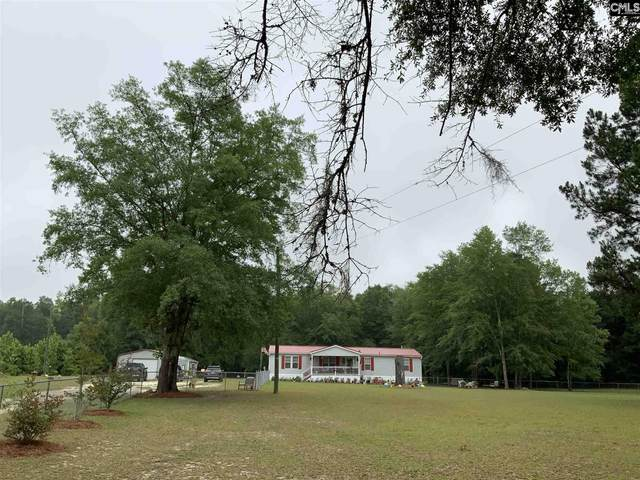 952 Lemon Creek Road, Bamberg, SC 29003 (MLS #494921) :: Home Advantage Realty, LLC