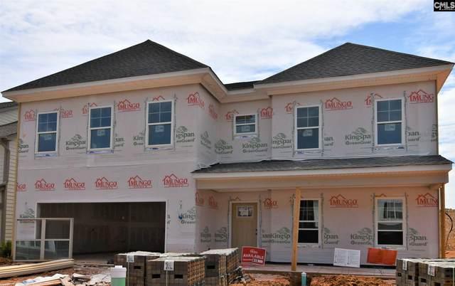471 Malachite Drive, Chapin, SC 29072 (MLS #495099) :: EXIT Real Estate Consultants