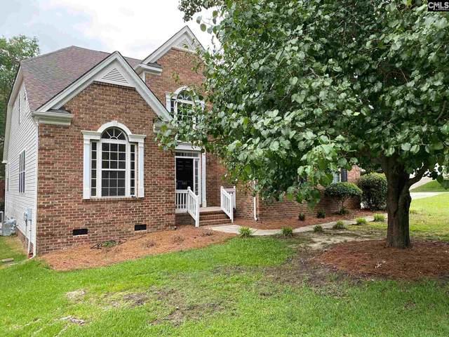 413 Mana Vista Court, Lexington, SC 29072 (MLS #495180) :: EXIT Real Estate Consultants