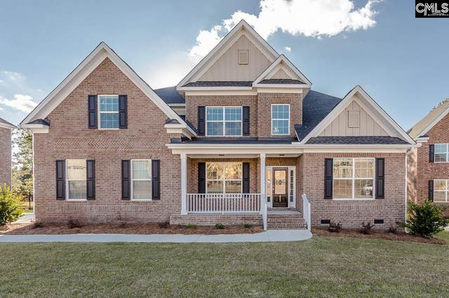 709 Top View Lane, Elgin, SC 29045 (MLS #495281) :: NextHome Specialists