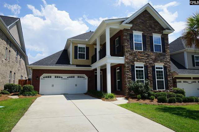 752 Moonsail Circle, Chapin, SC 29036 (MLS #495302) :: EXIT Real Estate Consultants