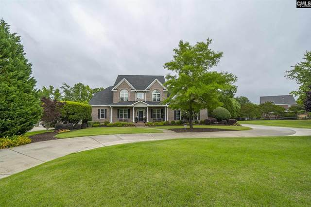 1075 Richard Franklin Road, Chapin, SC 29036 (MLS #495374) :: The Latimore Group