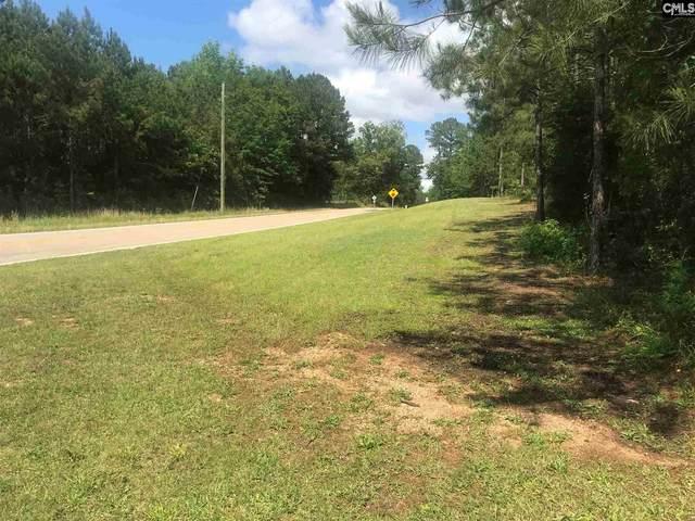 10 Mud Creek Road, Pomaria, SC 29126 (MLS #495381) :: Home Advantage Realty, LLC