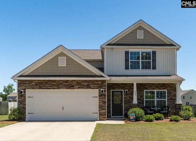 865 Sunseeker Drive, Chapin, SC 29036 (MLS #495445) :: The Olivia Cooley Group at Keller Williams Realty